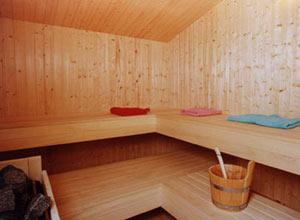 sauna_mini
